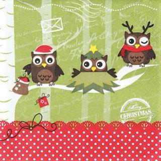 ペーパーナプキン(33)home:(5枚)Dressed up Owls-HO146