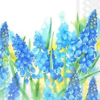 ペーパーナプキン(25)IHR:(5枚)BLUE PEARLS-IH92(25)