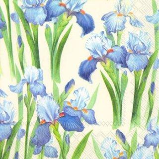ペーパーナプキン(33)IHR:(5枚)BLUE IRIS cream-IH321