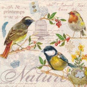 ペーパーナプキン(33)Nuova:(5枚)LES OISEAUX(鳥)-NU33