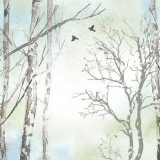 ペーパーナプキン(33)Nuova:(5枚)Faded Dreams-NU-132