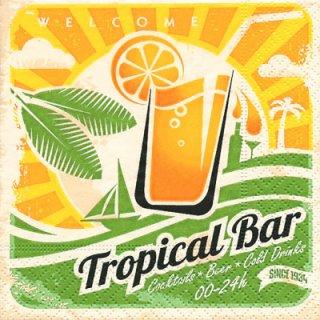 ペーパーナプキン(25)paper:(5枚)Tropical Ban-PA4(25)