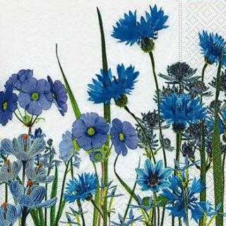 ペーパーナプキン(25)paper:(5枚)Blue meadow-PA18(25)