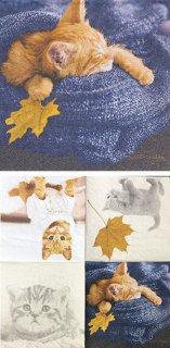 ペーパーナプキン(25)paper:(5枚)Autumn cats-PA20(25)