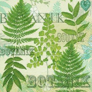 ペーパーナプキン(33)paper:(5枚)Botanic garden-PA159