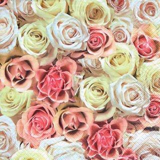 ペーパーナプキン(33)paper:(5枚)Festive roses-PA252