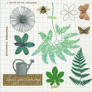ペーパーナプキン(33)paper:(5枚)Love gardening-PA254