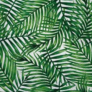 ペーパーナプキン(33)paw:(5枚)Tropical Leaves-PW135