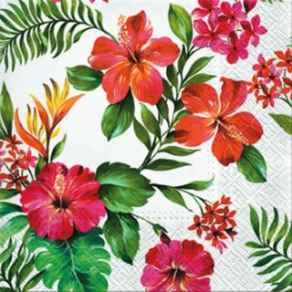 ペーパーナプキン(33)paw:(5枚)Hawaiian Flowers-PW155