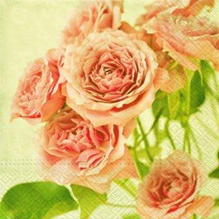 ペーパーナプキン(33)paw:(5枚)Pink Roses-PW171