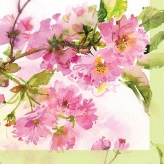 ペーパーナプキン(25)ppd:(5枚)Cherry Blossom-PP21(25)
