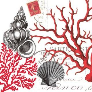 ペーパーナプキン(33)ppd:(5枚)Red Coral-PP48