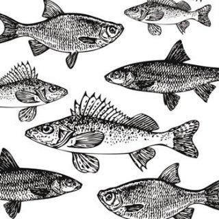 ペーパーナプキン(33)ppd:(5枚)Graphic Fishes(ホワイト・ブラック)-PP50