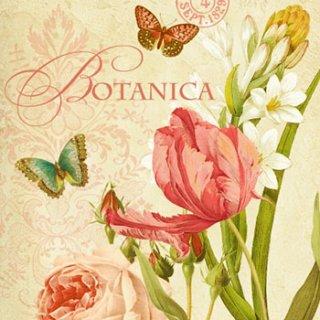 ペーパーナプキン(33)ppd:(5枚)Botanica-PP83