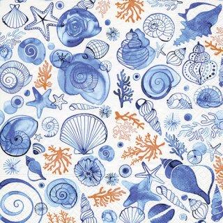 ペーパーナプキン(33)paper:(5枚)Sea life-PA275