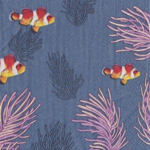 ペーパーナプキン(33)paper:(5枚)Clown Fishes(カクレクマノミ)-PA300