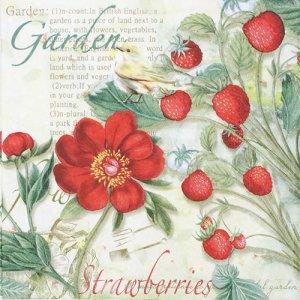 ペーパーナプキン(33)NOUVEAU:(5枚) Strawberry Garden-NO122