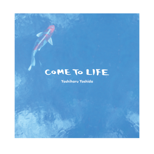 RIDE GROOVE / COME TO LIFE