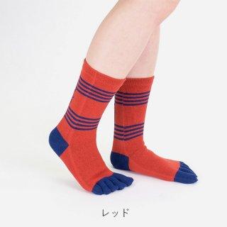 コイラ柄五本指靴下