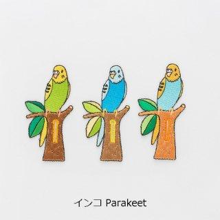 インコ Parakeet