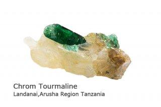 クロムトルマリン 結晶石 タンザニア産|Landanai, Arusha Region, Tanzania|電気石|Chrom Tourmaline|