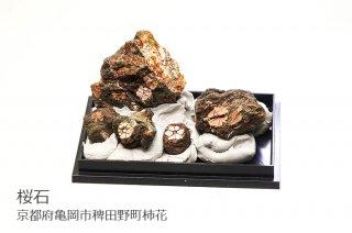 【結晶標本】桜石 母岩付結晶石|京都府亀岡市稗田野町柿花|5個入り|クーポン使用不可|