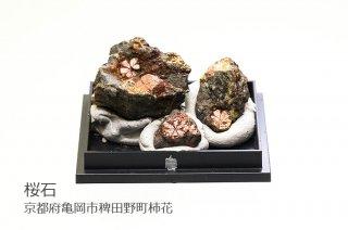 【結晶標本】桜石 母岩付結晶石 京都府亀岡市稗田野町柿花 3個入り クーポン使用不可 