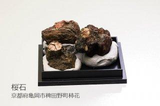 【結晶標本】桜石 母岩付結晶石|京都府亀岡市稗田野町柿花|3個入り|クーポン使用不可|