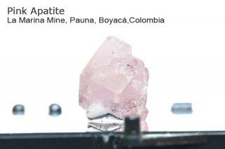 ピンクアパタイト 結晶 コロンビア産|La Marina Mine, Pauna, Boyac Colombia|Pink Apatite|燐灰石|