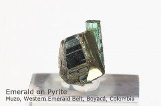 エメラルド on パイライト 結晶石 コロンビア産|緑柱石|Muzo, Western Emerald Belt, Boyac Colombia|Emerald|