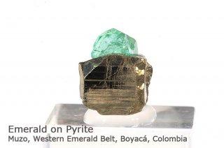 エメラルド on パイライト 結晶石 コロンビア産|緑柱石|2343A|Muzo, Western Emerald Belt, Boyac Colombia|Emerald|