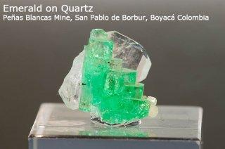 エメラルド on クォーツ 結晶石 コロンビア産|緑柱石|Penas Blancas Mine, San Pablo de Borbur, Boyaca Colombia|Emerald|