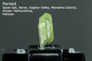 ペリドット 結晶 パキスタン産|Sapat Gali, Pakistan|かんらん石|