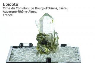エピドート クォーツ 結晶 フランス産|Cime du Cornillon, Le Bourg-d'Oisans, Isere, Auvergne-Rhone-Alpes, France|緑簾石|