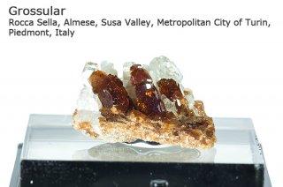グロッシュラーガーネット 結晶 イタリア産|Rocca Sella, Almese, Susa Valley, Italy|灰礬柘榴石|