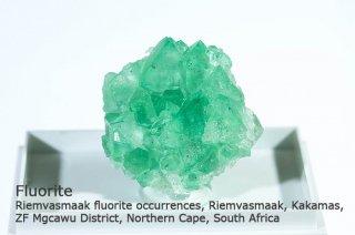フローライト 結晶 南アフリカ|Riemvasmaak fluorite South Africa|蛍石|