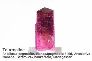 トルマリン 結晶 マダガスカル産|ルベライト|リシア電気石|Antsikoza pegmatite, Vakinankaratra, Madagascar|Tourmaline|