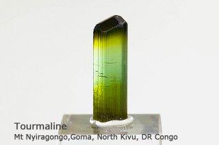トルマリン 結晶 コンゴ共和国 産|リシア電気石|Mt Nyiragongo, Goma, North Kivu, DR Congo|Tourmaline|