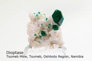 ダイオプテーズ 結晶石 ナミビア産 Tsumeb Mine, Tsumeb, Oshikoto Region, Namibia Dioptase 翠銅鉱 