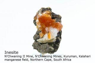 イネサイト 結晶 南アフリカ産 N'Chwaning II Mine, South Africa イネス石 