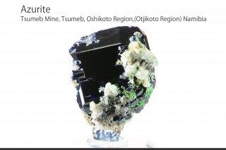 アズライト 結晶 ナミビア産|Azurite|Tsumeb Mine, Tsumeb, Oshikoto Region,(Otjikoto Region) Namibia|藍銅鉱|