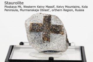 スタウロライト 結晶標本 ロシア産|十字石|Ploskaya Mt, Russia|Staurolite|