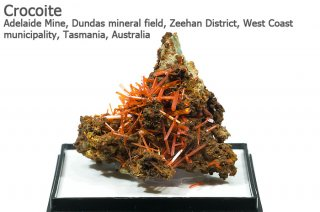 クロコアイト 結晶石 オーストラリア産 Adelaide Mine, West Coast Tasmania, Australia 紅鉛鉱 Crocoite 