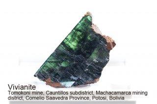 ビビアナイト 結晶石 ボリビア産|藍鉄鉱|Tomokoni mine, Potosi Department, Bolivia|藍鉄鉱|Vivianite|