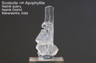スコレサイト with アポフィライト 結晶石 インド産|Nashik District, Maharashtra, India|Scolecite|Apophyllite|スコレス沸石|魚眼石|