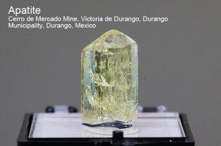 アパタイト 結晶 メキシコ産|Cerro de Mercado Mine, Durango Municipality, Durango, Mexico|Apatite|燐灰石|