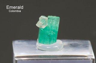 エメラルド and クォーツ 結晶石 コロンビア産|Chivor, Eastern Emerald Belt, Boyaca, Colombia|緑柱石|Emerald|2779A|