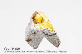 ウルフェナイト 結晶 メキシコ産|La Morita Mine, Sierra Mojina Diistrict,  Chihuahua, Mexico|Wulfenite|モリブデン鉛鉱|