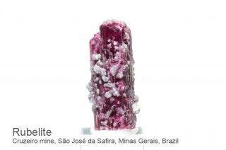 ルベライト 結晶 ブラジル産|Cruzeiro mine, Sao Jose da Safira, Minas Gerais, Brazil|Rubellite|Tourmaline|2865A|