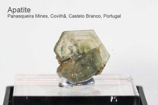 アパタイト 結晶 ポルトガル産|Panasqueira Mines, Covilha, Castelo Branco, Portugal|Apatite|燐灰石|